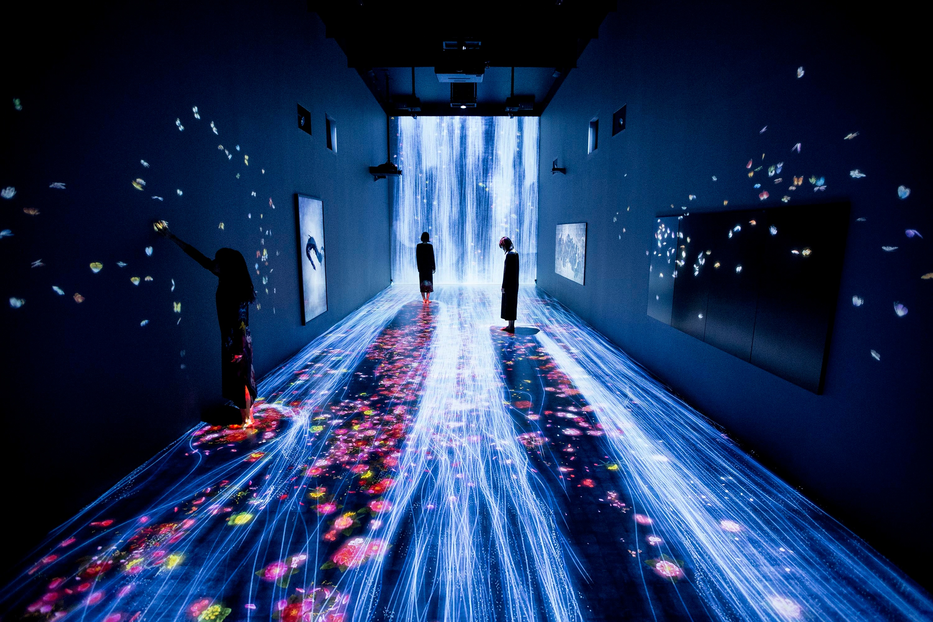 Installation view of teamLab: Transcending Boundaries